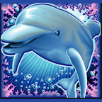 win real cash on Dolphin Reef