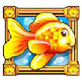 Spannende Zeiten mit Gold Fish