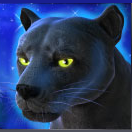 win real cash on Panther Moon