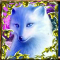 Jetzt Polar Fox Echtgeld Online