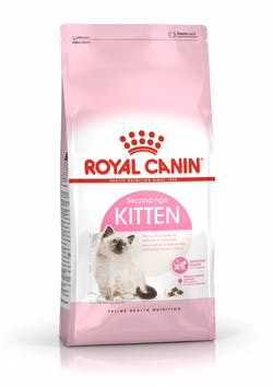 royal_kitten