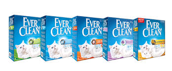 ever_clean