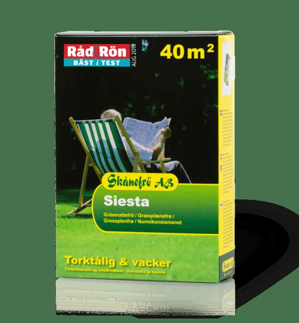 gräsfrö_siesta_1kg