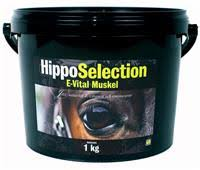 hipposelection_evital_muskel
