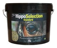 hipposelection_standard_5