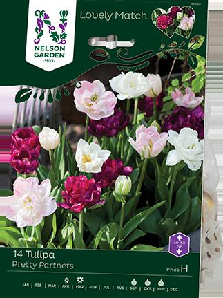 tilpan_nelson_garden_lovely_match