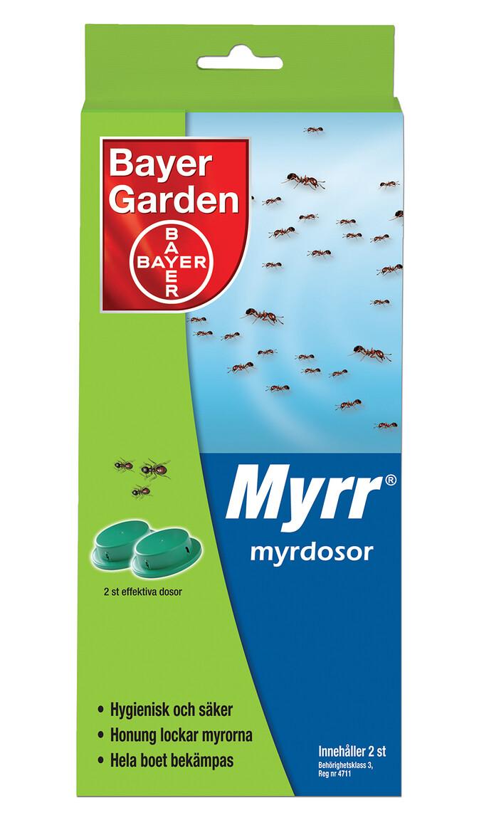 Myrr_myrdosa
