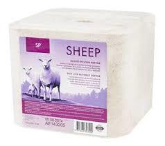 sp_sheep