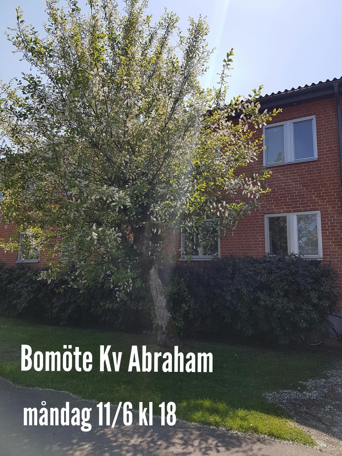 Bomote-Abraham.jpg
