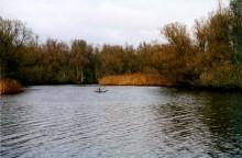 Biesbosch boottocht en Ark van Noach