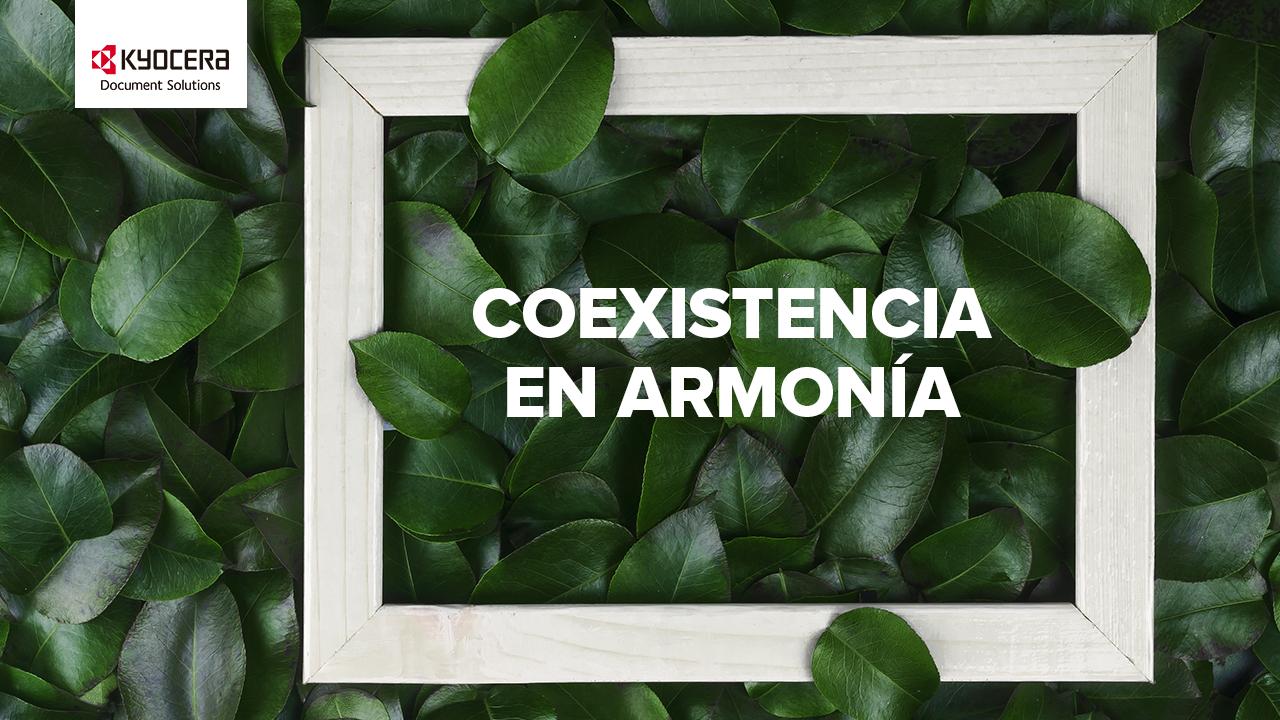 KYOCERA certifica el 99% de sus productos como 'respetuosos con el medio ambiente'