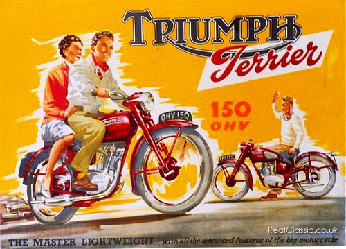 And finally, a Triumph Terrier...