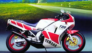 Yamaha TZR250 two stroke motorcycle