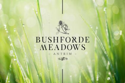Bushforde Meadows Antrim Brochure Logo
