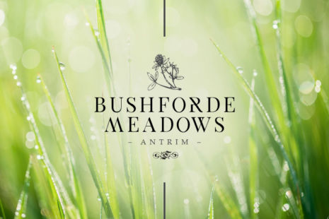 Bushforde Meadows