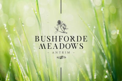 Bushforde Meadows