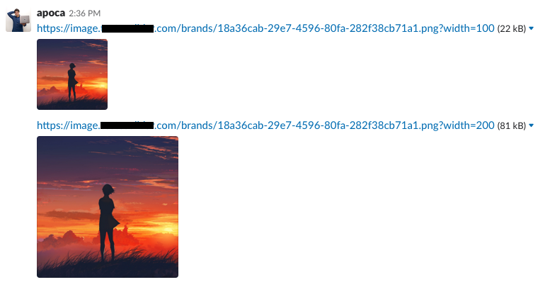Example usage of lambda resize image