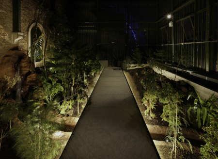 Com Lan Serre Jardin Des Plantes 13 06 2010 0289