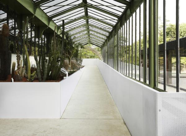 Com Lan Serre Jardin Des Plantes 13 06 2010 0211