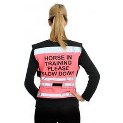 Equisafety Horse In Training Please Please Please Slow Down Air Weste (TL718) a28dab