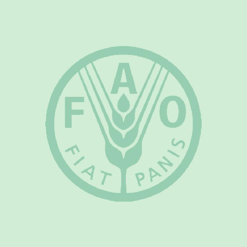 Client logo 07