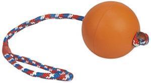 Beeztees Dog Toy just £1.59 Amazon Add-on item