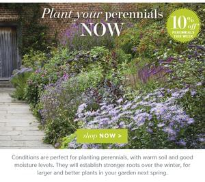Sarah Raven Perennials. Get 10% Off. ENDS THIS SUNDAY