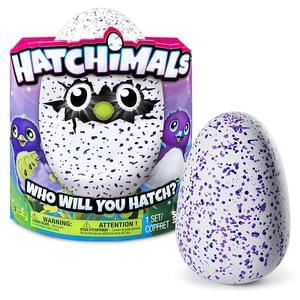 Hatchimals are here!