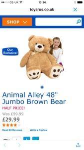 Giant teddy bear half price