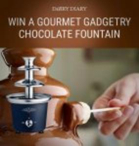 Win a Gourmet Gadgetry Chocolate Fountain + a copy of Diary Favourites cookbook