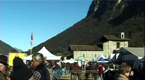 Fiera di San Martino   2009