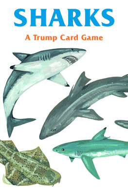 Sharks - Product Thumbnail