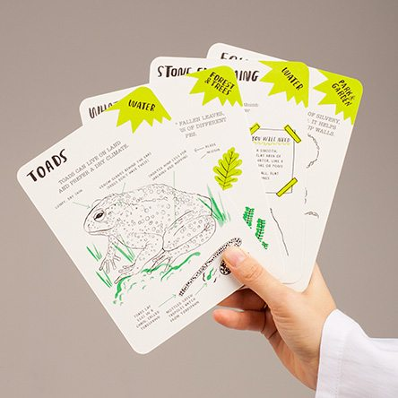 With the new Hello Nature activity cards by Nina Chakrabarti