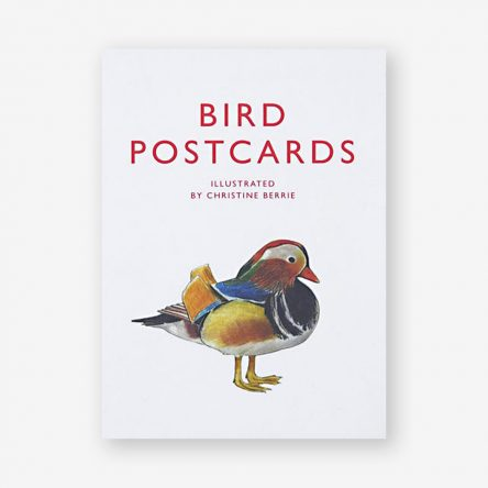 Bird Postcards