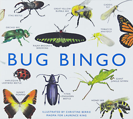 Bug Bingo - Product Thumbnail