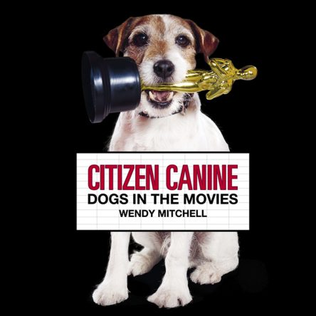 10 Dog Films for the Whole Family - Blog Image