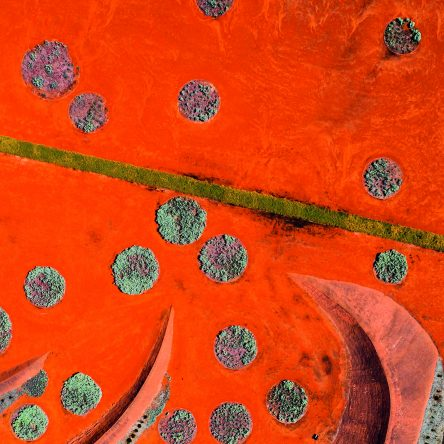 From Above - Blog Image