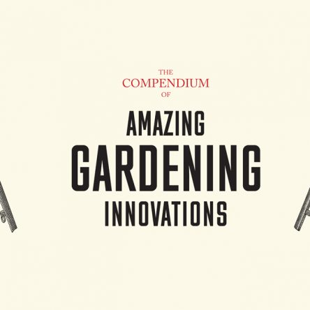 Historical Innovations That Shape Our Gardens - Blog Image