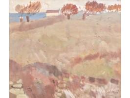 Shorelines and Hills (Maluri și Coline)