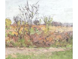 Landscape of Hârsa (Peisaj la Hârsa)