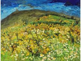 Deal Înflorit (Blooming Hill)