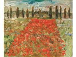 Poppy Field (Câmp cu Maci)