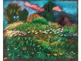 Flower Field (Câmp cu Flori)
