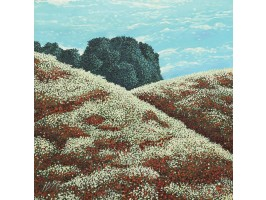 Hills with Poppies and Daisies (Coline cu Maci și Margarete)
