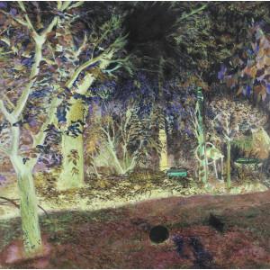 Grădina Oanei