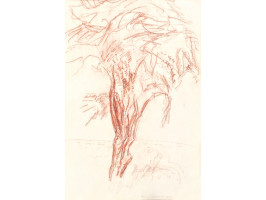 The Tree (Copacul)
