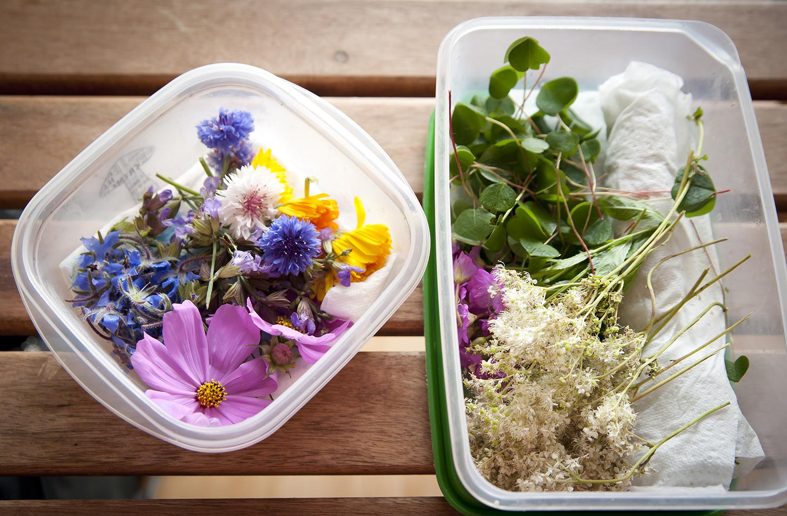 fleurs comestibles achat en ligne