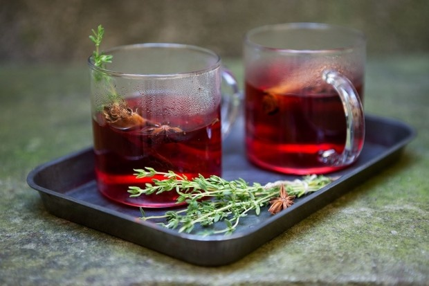 Cranberry-Thymian-Punsch mit Wodka