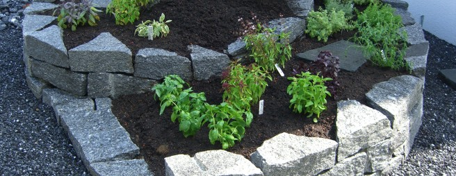 Do it yourself einen steingarten anlegen - Steingarten anlegen tipps ...