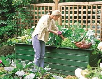 Coole Hochbeete, praktische Saatband-Neuheiten und klevere Pillensaat-Pflänzchen: Jetzt macht Gärtnern noch mehr Spass.